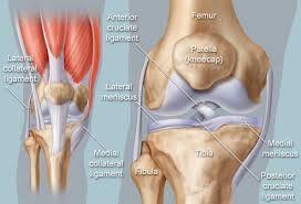 gas peddle knee